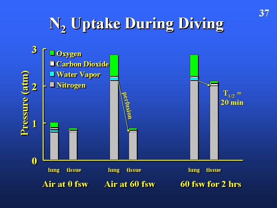 1. stickstoff-sauerstoff