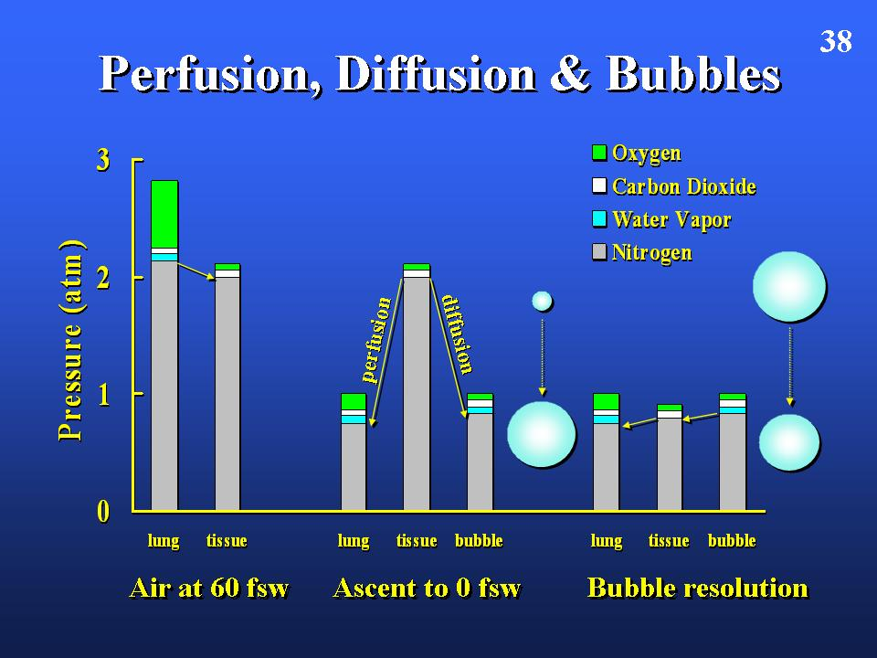 2. stickstoff-sauerstoff